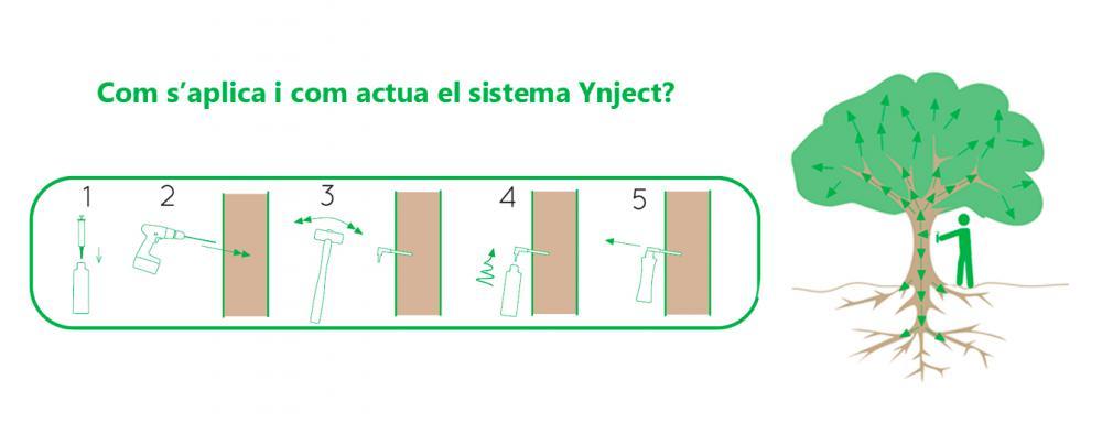 Com aplicar i com actua el sistema Ynject